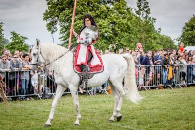 The Cavalry of Heroes performing Medieval Jousting Show at Lambeth Country Show 2017 Knights on Horseback 15