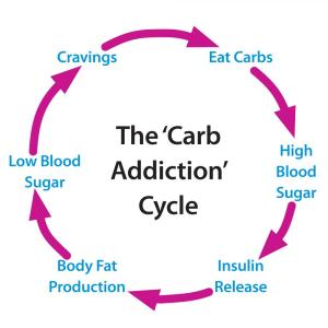 carb_cycle