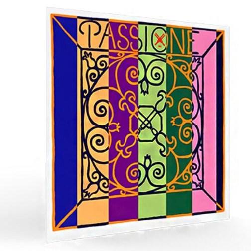 Струны для скрипки PIRASTRO Passione Solo 219081 описание и цены