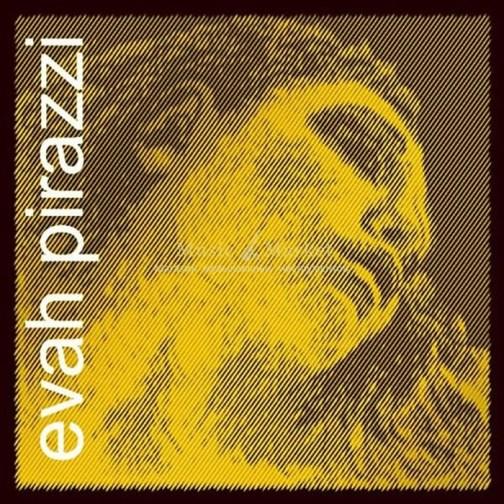 Комплект струн Pirastro 335020 Evah Pirazzi Gold для виолончели размером 4/4 описание и цены