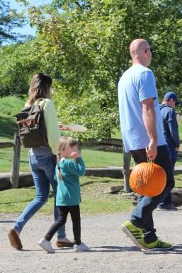 Pumpkins The Center 2018 10