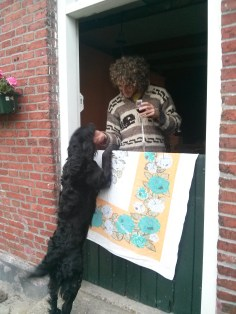Asher in Friesland