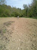 We hoed this by had to plant zucchini, lettuce, beans, onions, and more