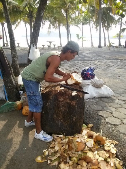 We went back to the coconut lady to say thank you, her friend grabbed his machete and cut out the meat for us