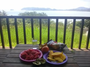 A lunch of tropical fruits in the tropics