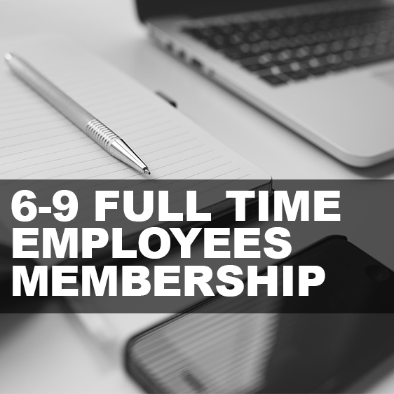 6-9 Full Time Employees