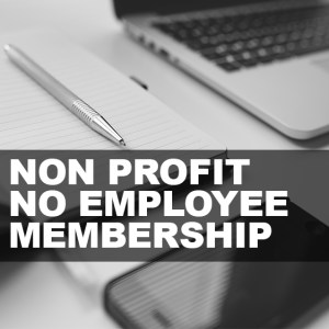 Non Profit No Employees