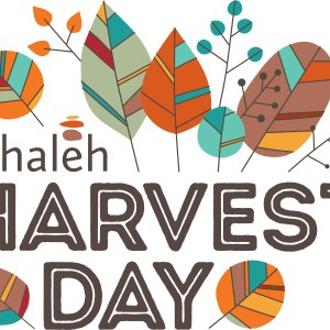 Tehaleh Harvest Day