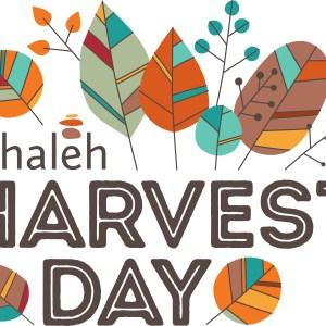 Tehaleh Harvest Day