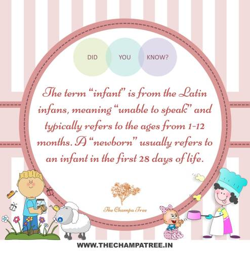 Did You Know Facts - Newborn and infant
