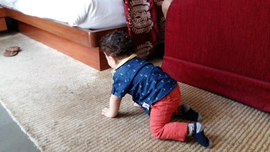 Things to keep away from toddler 1 (3)