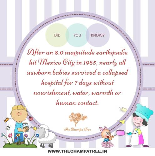 Did You Know Facts - High magnitude earthquake