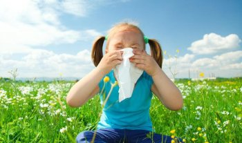 Fight Seasonal Allergies With The Best And Natural Air Purifiers