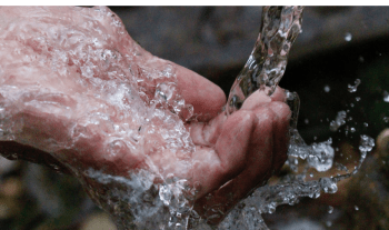 10 Easy Ways To Reduce Wastage Of Water