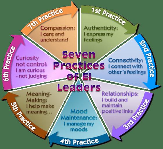 7 EI Leader Practices