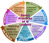 Meaning - EI Leader Practice 5