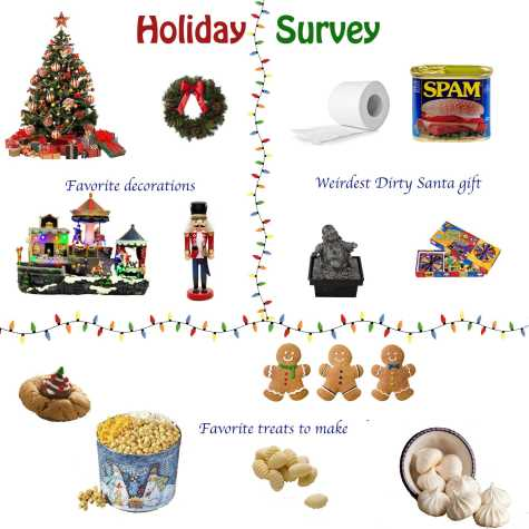 Holiday survey results