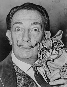 Dali with pet ocelot