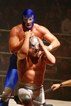 Lucha Libre Wrestler photo for Do You Need A Rival post