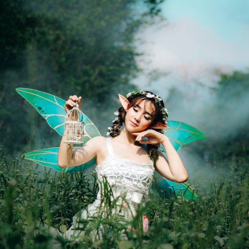 artist statement fairy, high rez photo