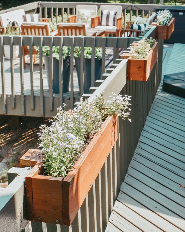 Sharing all our spring deck updates today on the blog and over on YouTube!