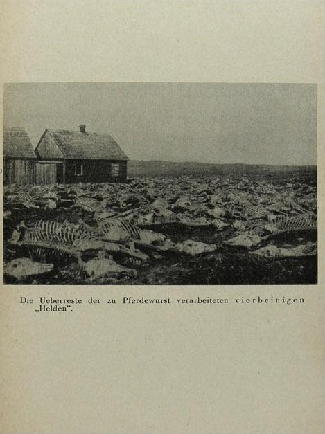 Ernst Friedrich - Krieg dem Kriege 12