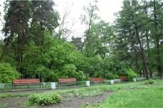 "Sokolniki Park (Парк ""Сокольники""), 1950s"