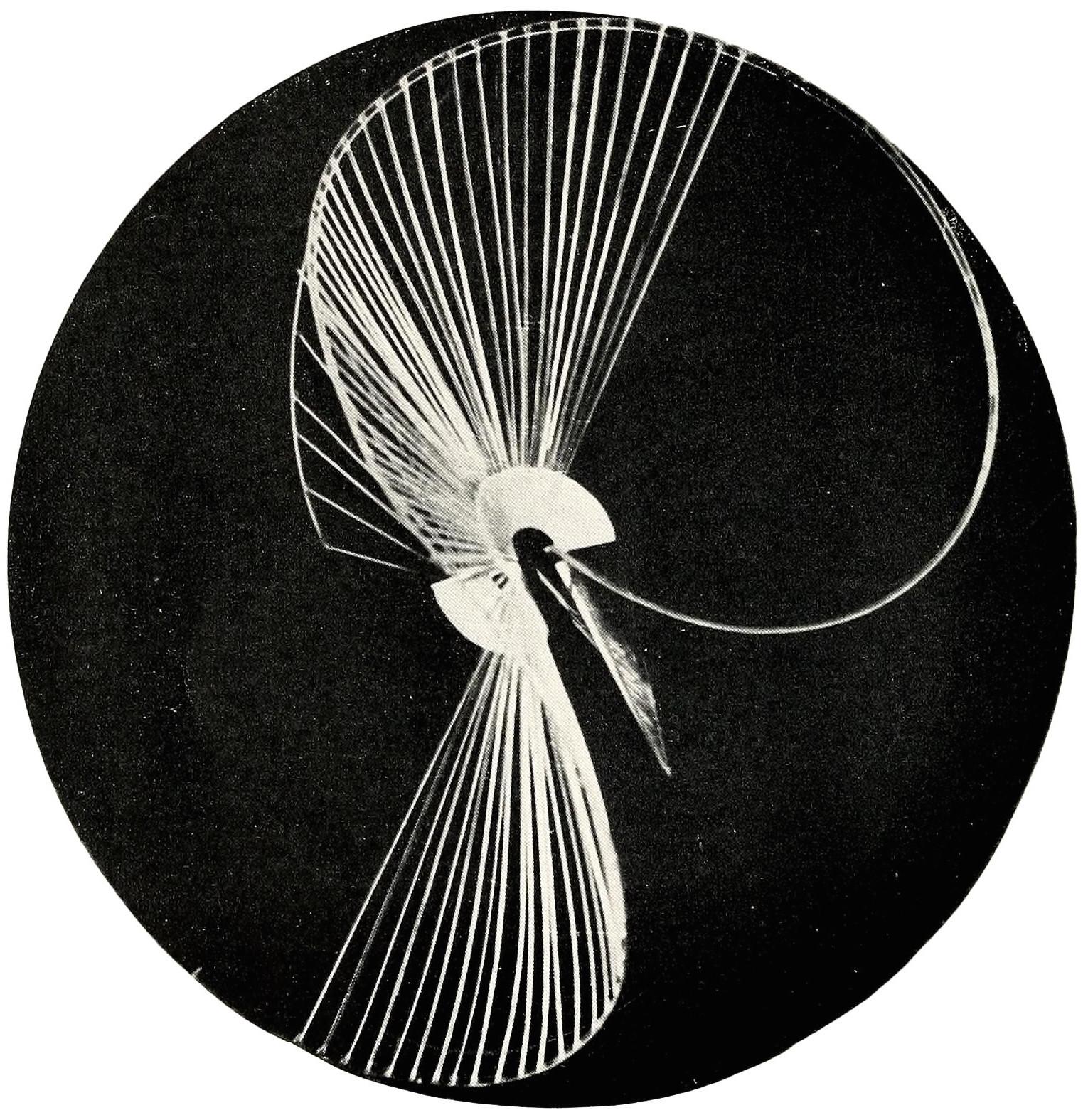 "Naum Gabo, Spheric relief construction (1937), plastic 18"" high"