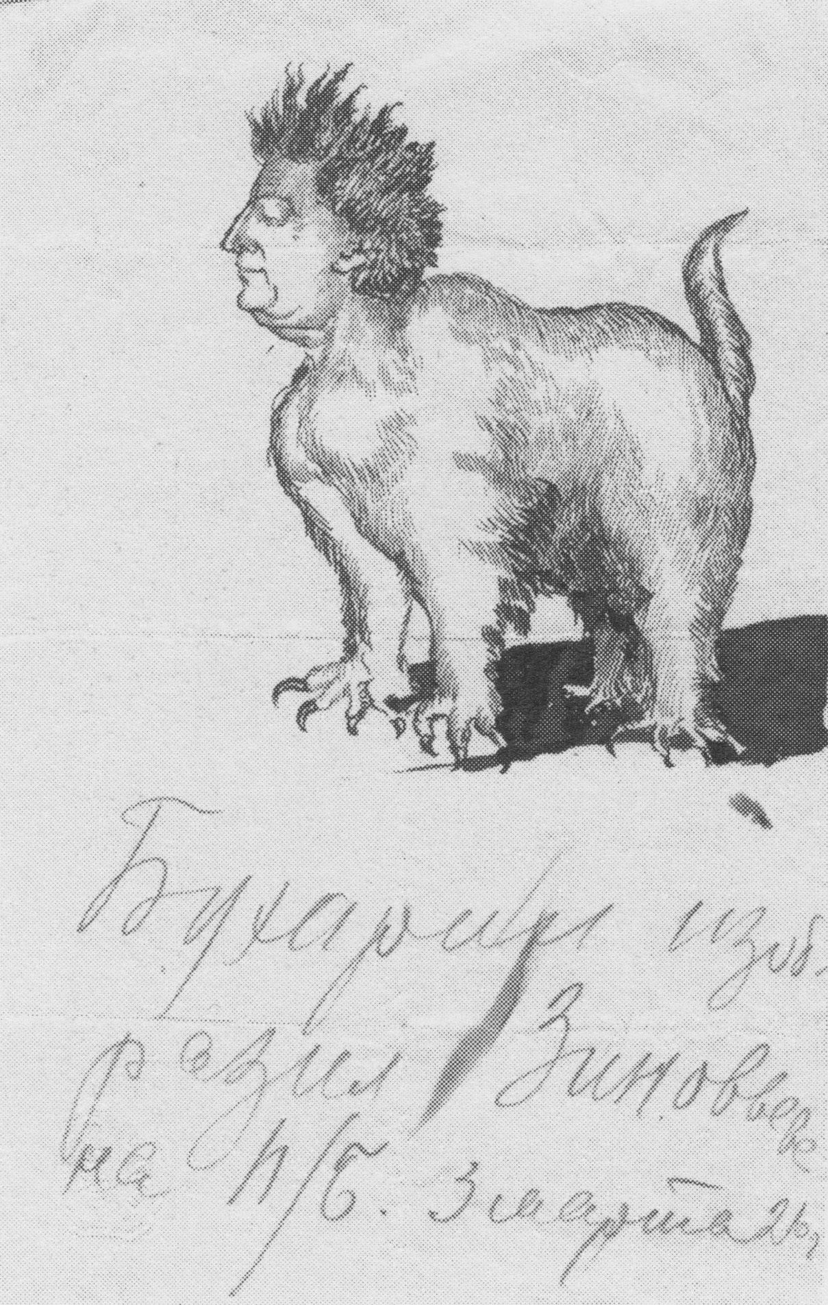 G.Y. Zinoviev sketched by N.I. Bukharin. 3 March 1926