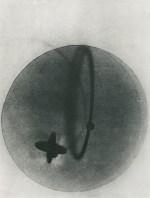 László Moholy-Nagy Untitled (fgm80A), 1923 - 1925
