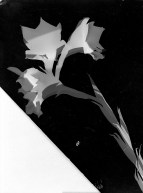 Laszlo Moholy-Nagy (1895 - 1946) Sans titre 1926 Photomontage, épreuve gélatino-argentique sur papier satiné cartonné 23,9 x 17,8 cm