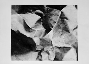 Laszlo Moholy-Nagy, Photogramme, 1938 - 1943 Reproduction of a work