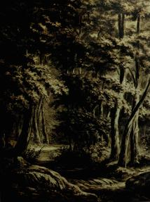 Woods with Stream 1880, charcoal with crayon on paper Slijper collection, Blaricum