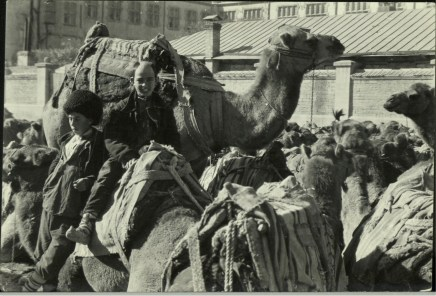 Margaret Bourke-White, Russians w. saddled camels crowded into a square in this Caspian port city in Azerbaijan (Baku, 1931)