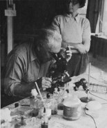at-work-in-the-laboratory-at-organon-1947