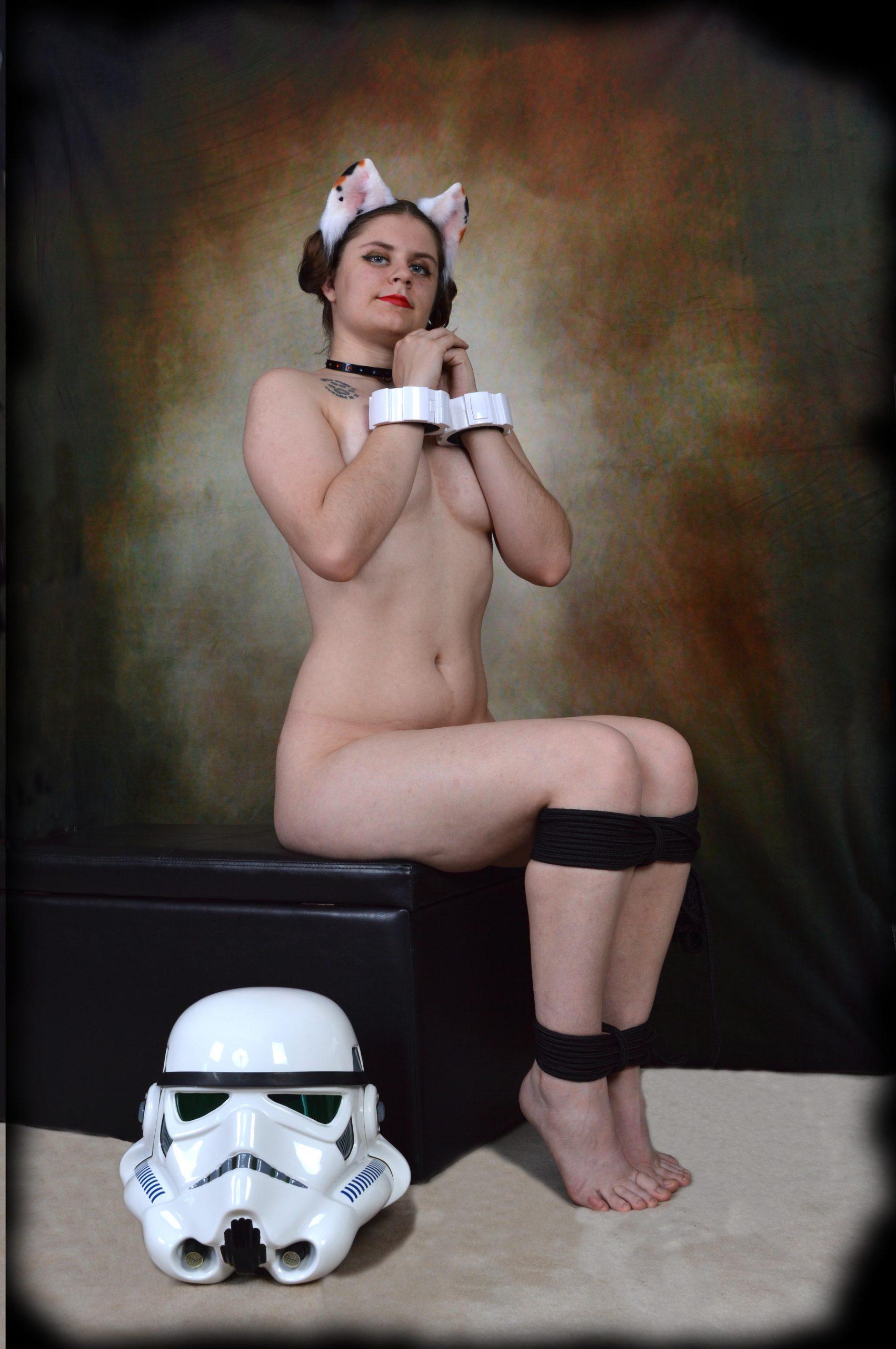 Rebel Purriness Leia post thumbnail