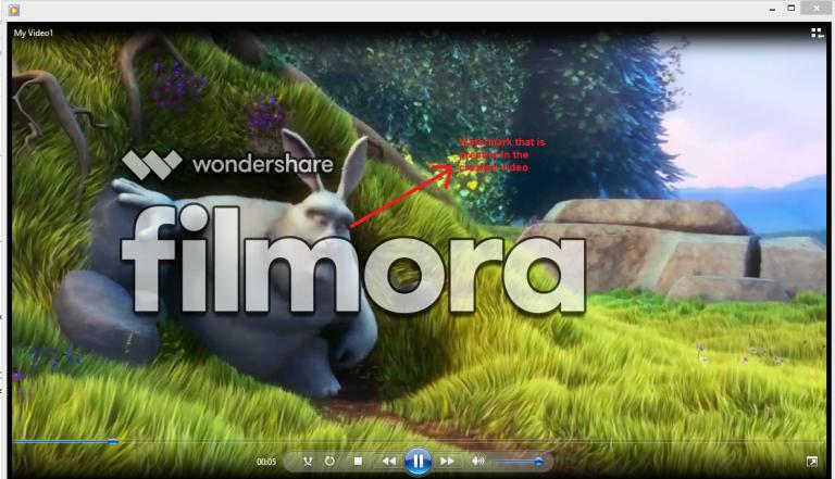 wondershare video editor limitation