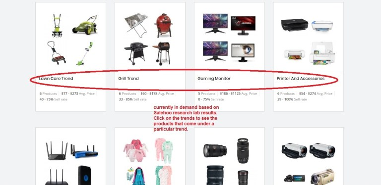 Salehoo product trends