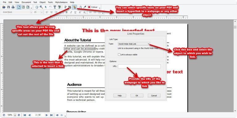 Ashampoo PDF Pro link tool
