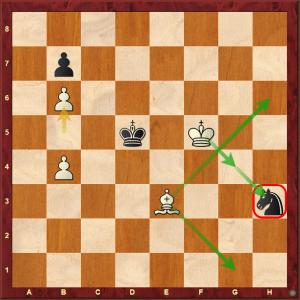 6 Shankland Stalemate