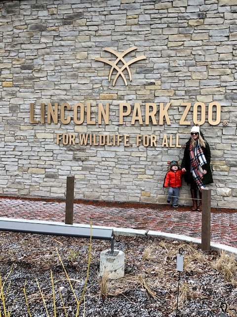 LEAP classes for toddlers at the Lincoln Park Zoo