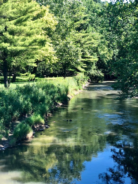 A Family getaway to Pine Creek Escape in Oregon, Illinois is perfect for hiking, horseback riding, and spending time outside.