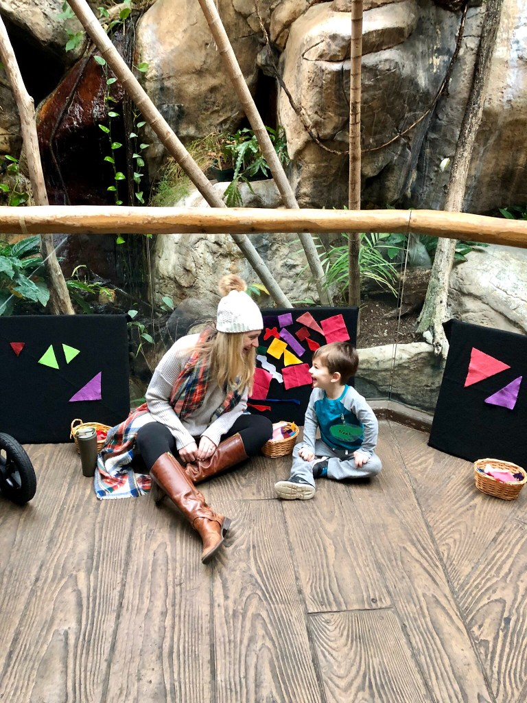 LEAP Class at Lincoln Park zoo is a great winter activity for the family to do indoors during Chicago's cold winter! It's hands on and keeps toddlers very entertained all while learning.