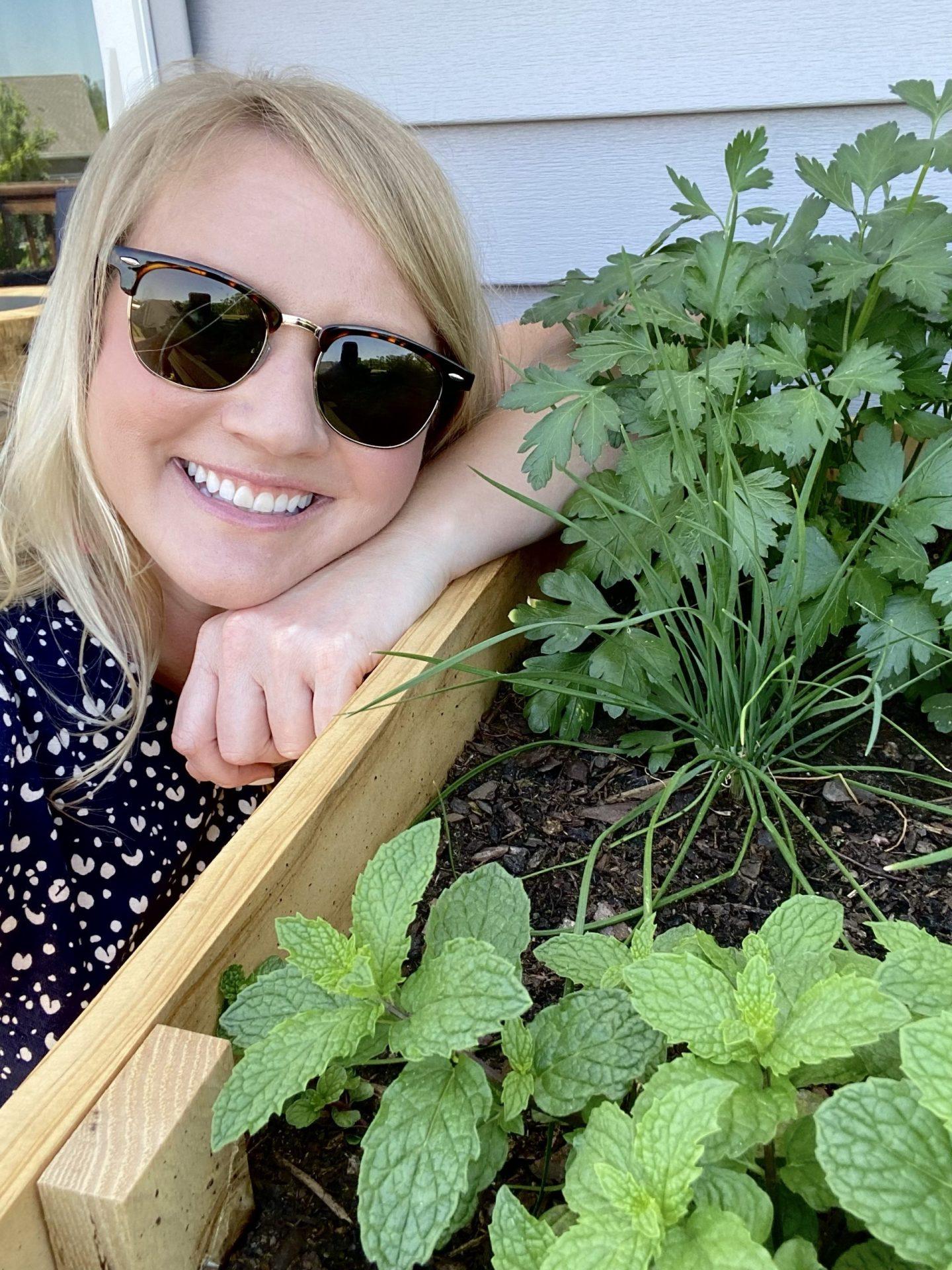 Herb Gardens for Beginners