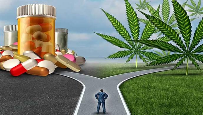 Health-Benefits-of-cannabis