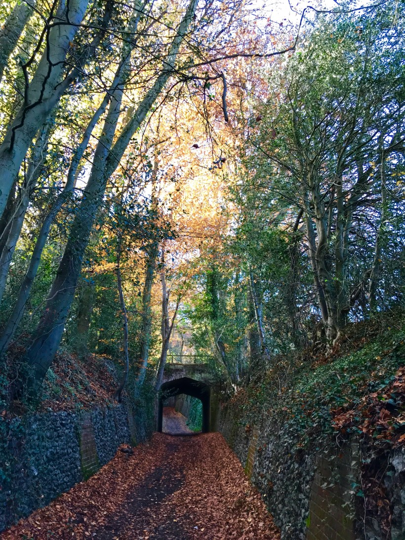A haunted Holloway on Halloween in the Chilterns