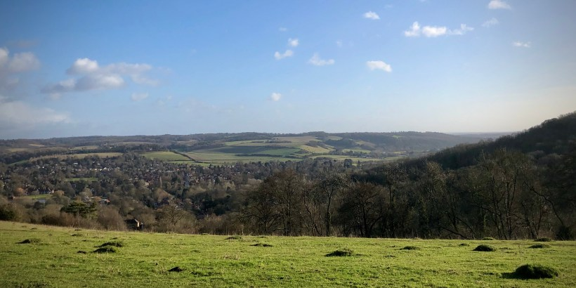 The view from Lardon Chase, above Streatley