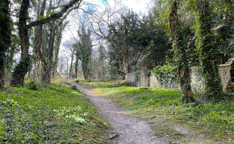 Tring Park paths