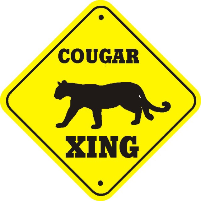 The Cougar Convo