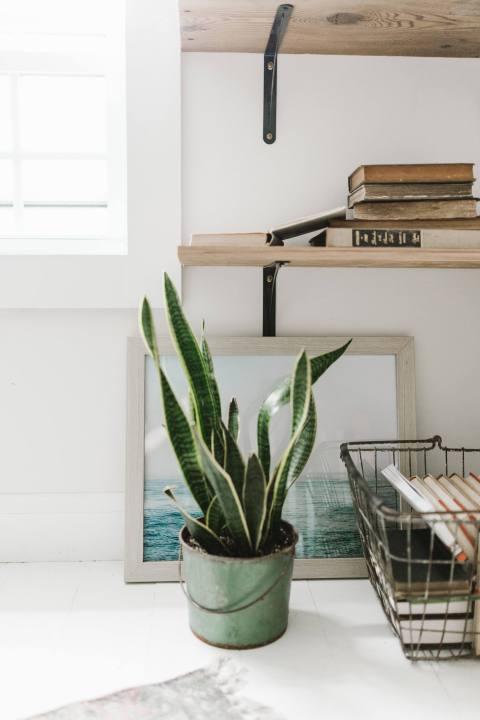 Open Shelves Designed